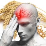grain_brain_blood_flow